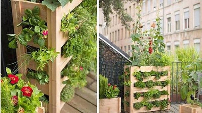 Comment faire un potager vertical chez soi avec une palette de bois for Jardin potager bois